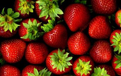 10 fakta du antagligen inte visste om jordgubbar