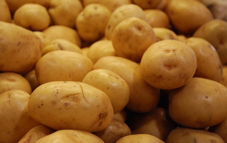 10 fakta du antagligen inte visste om potatis