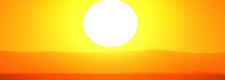 solen2