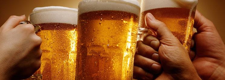 beerfokus