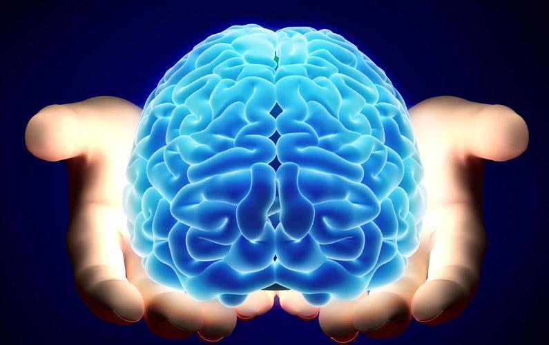 10 fakta du antagligen inte visste om hjärnan