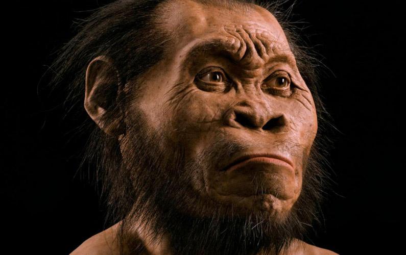 10 fakta du antagligen inte visste om människans historia