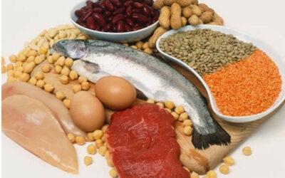 10 fakta du antagligen inte visste om protein
