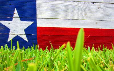 10 fakta du antagligen inte visste om Texas