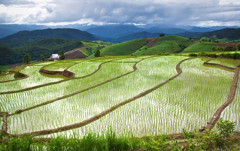 10 fakta du antagligen inte visste om Asien