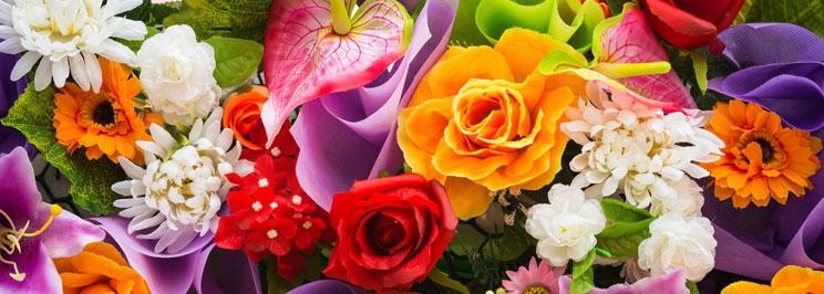 blommorfokus