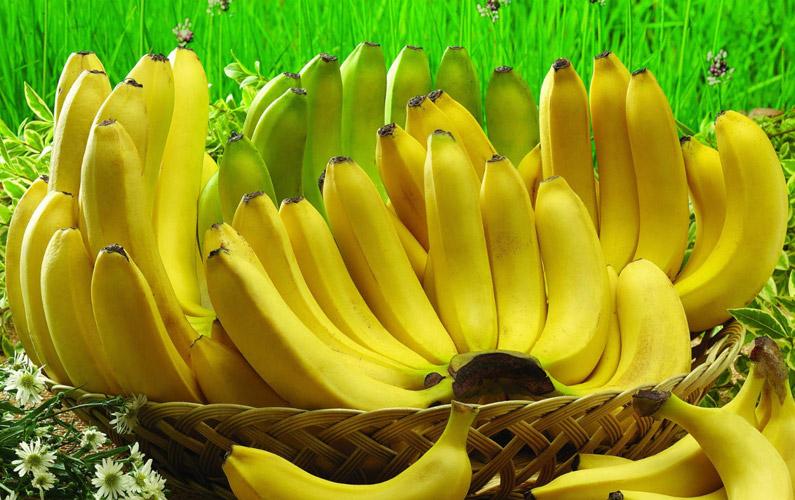 Banansläktet, eller bananer, är ett släkte av enhjärtbladiga växter som ingår i familjen bananväxter (kanske inte helt oväntat).