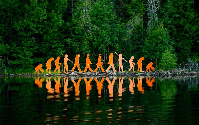 10 fakta du antagligen inte visste om evolutionen