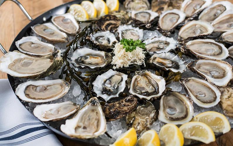 10 fakta du antagligen inte visste om ostron