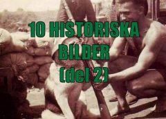 10 intressanta historiska bilder (del 2)
