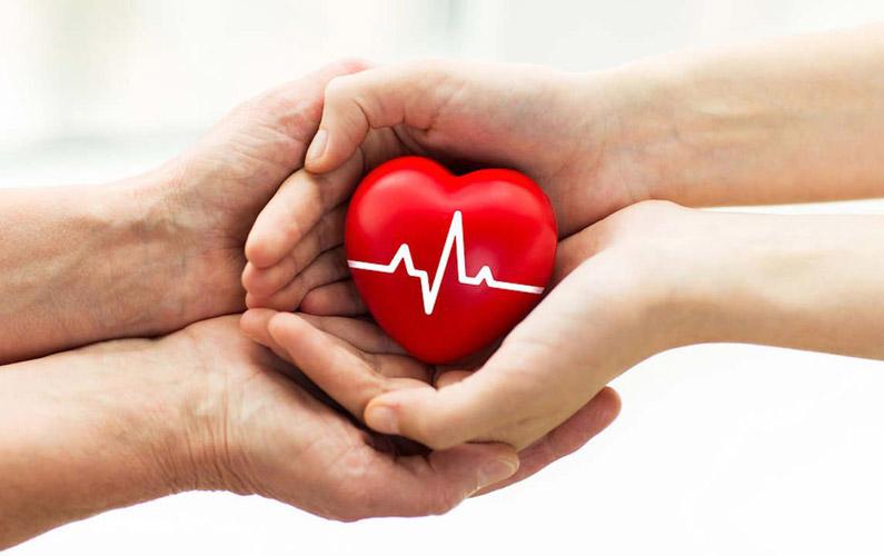 10 fakta du antagligen inte visste om organdonation