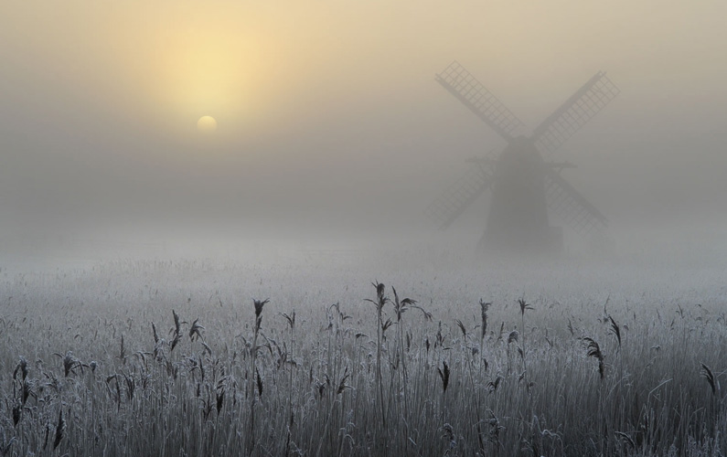 10 fakta du antagligen inte visste om dimma