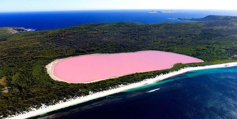 Hillier i Australien är en rosafärgad sjö, som forskarna fortfarande är oense om när det kommer till varför.