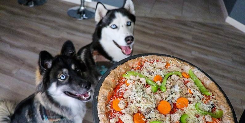 Det finns även en pizza bakad endast för hundar, som är gjord i huvudsak av mjöl, morötter, parmesanost och selleri.