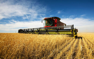 10 fakta du antagligen inte visste om jordbruk