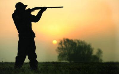10 fakta du antagligen inte visste om jakt