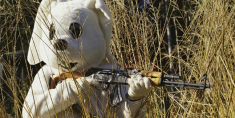 Den brittiska bosättaren Thomas Austin släppte lös 24 kaniner i Australien. 50 år senare hade dessa 24 kaniner istället blivit 10 miljarder. Kaninjakt är väldigt vanligt tack vare detta.