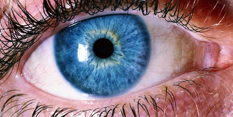 Det mänskliga ögat är tillräckligt känsligt för att upptäcka en liten ljusflamma på upp till 48 kilometer bort, förutsatt att du står på en plan mark och befinner dig i fullständigt mörker.