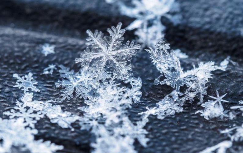 Snö är nederbörd i form av iskristaller, enstaka eller sammanfogade, som faller från moln. Det kan även refereras till snö som är på marken.
