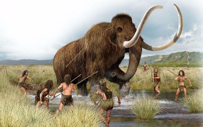 Mammutar (Mammuthus) är ett utdött släkte elefantdjur som härstammar från elefanter och dog ut för cirka 5 000 - 6 000 år sedan.