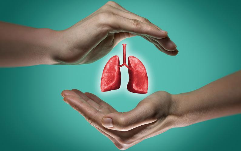 10 fakta du antagligen inte visste om dina lungor